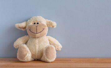 przytulanka niemowlęca - czy warto kupić?