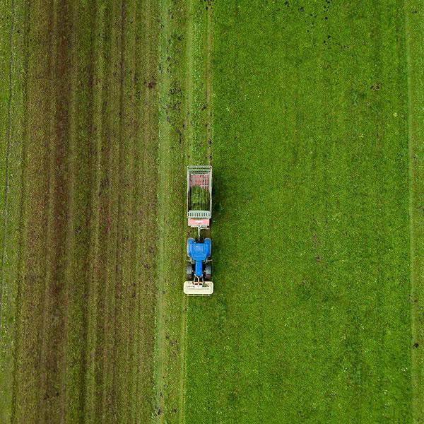 Jak wygląda nowoczesne rolnictwo